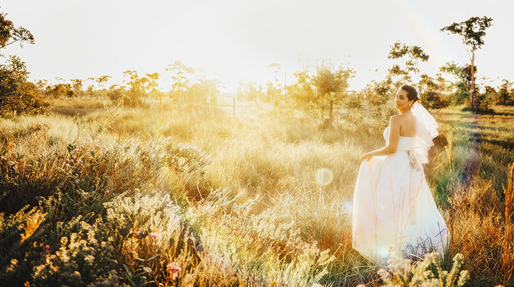 福井県で結婚式をディズニー色に!シンデレラのドレスが着れる式場